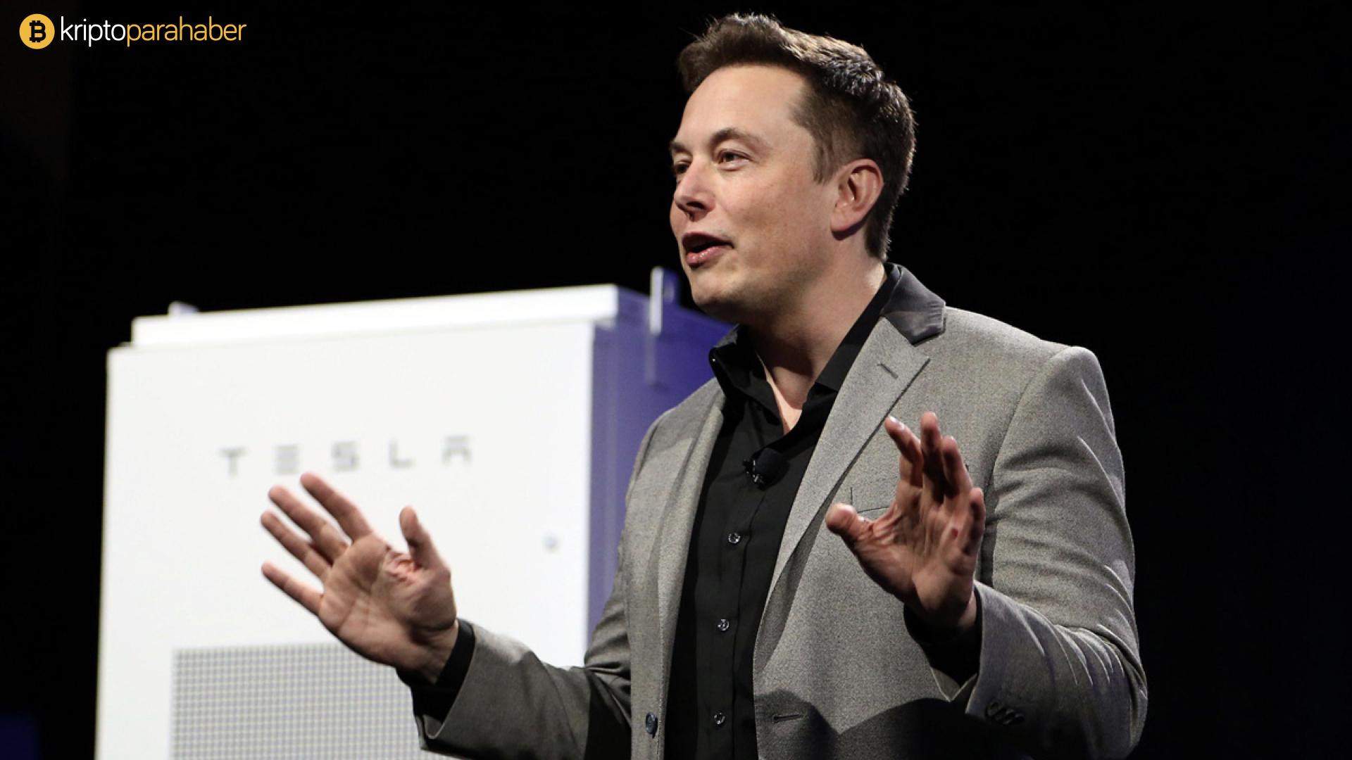 Elon Musk, NFT'si için 420 milyon Dogecoin istiyor