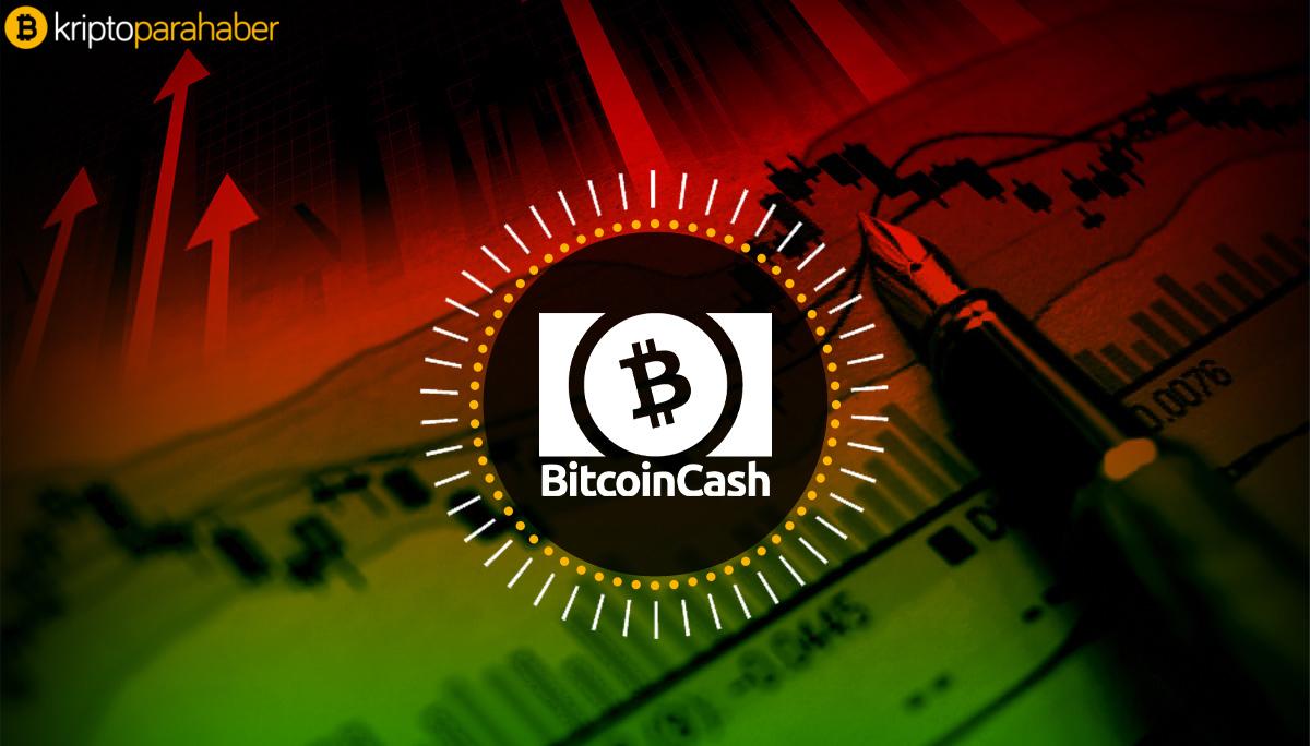 Bitcoin Cash'e ne oluyor? BCH düşüşünü devam ettirecek mi?