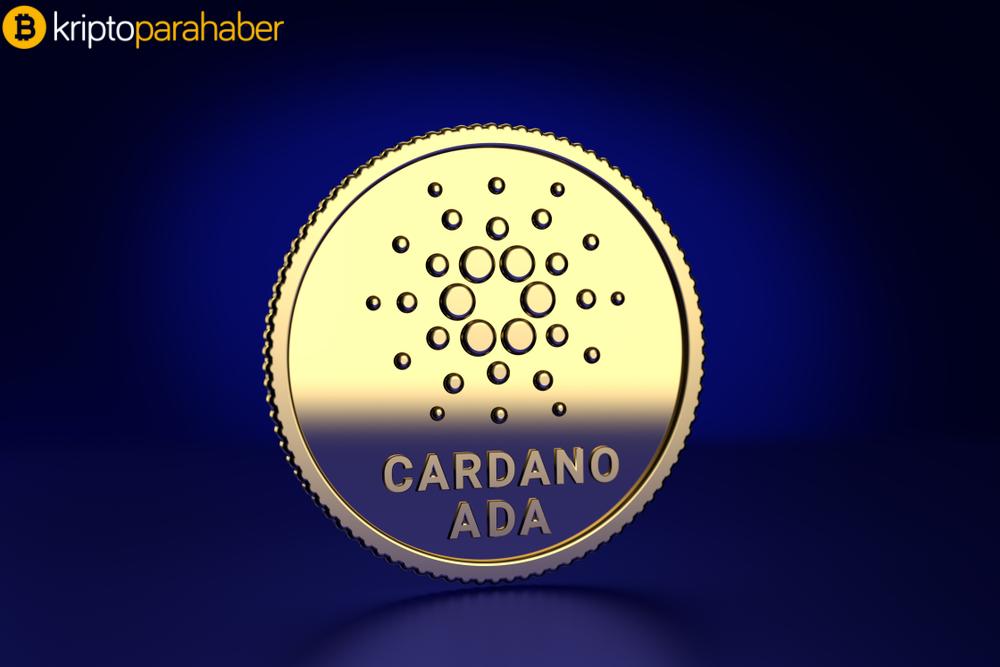 Cardano'dan çeyrek milyon dolarlık fon! Merkezsizlik üst aşamaya taşınıyor