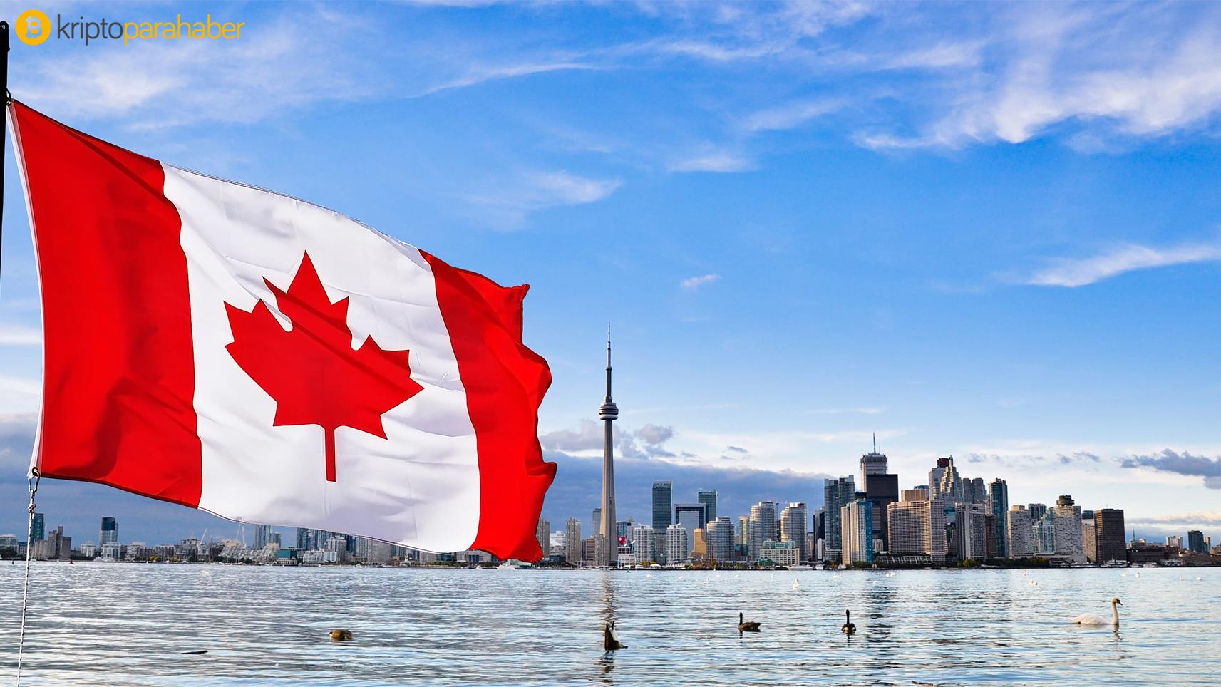 Kanadalı VersaBank'tan dikkat çeken dijital para hamlesi geldi! Hem dolar hem de euro destekli stabilcoinler geliyor