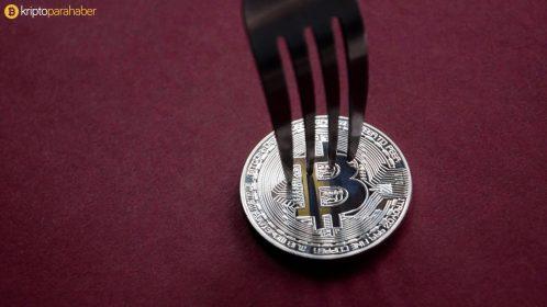 Vitalik Buterin yaklaşan Bitcoin Cash çatalı ile ilgili konuştu.