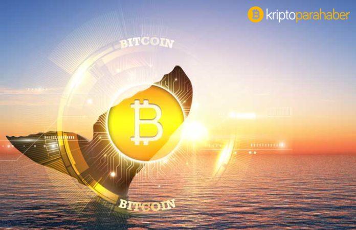 Bugün Bitcoin whitepaper'ın onuncu yıl dönümü, İyi ki doğdun BTC!