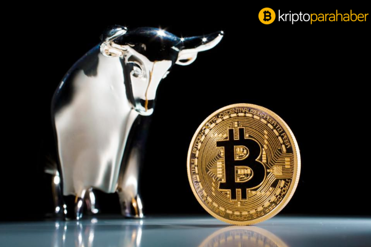 Bitcoin boğası sektördeki hakimiyetini koruyor