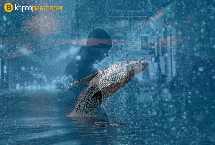 Dev balinalar canlandı: Milyonlarca dolarlık Bitcoin, Ethereum ve XRP hareket etti!