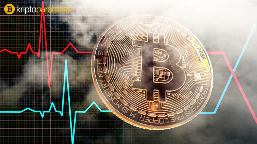 """Popüler analist: """"Bitcoin bir anka kuşu gibi doğacak ve bu seviyeleri görecek."""""""