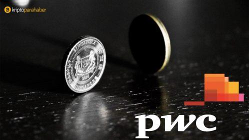 stabil coin pwc