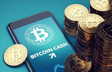 Bitcoin Cash'e genel bakış: BCH bir haftada yüzde 25 kazandı, neler oluyor?