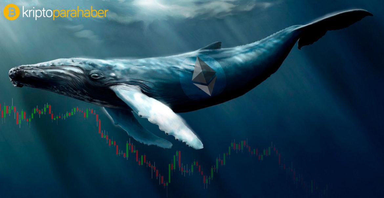 Bitcoin balinaları 1.5 milyar dolarlık BTC taşıdı – neler oluyor?
