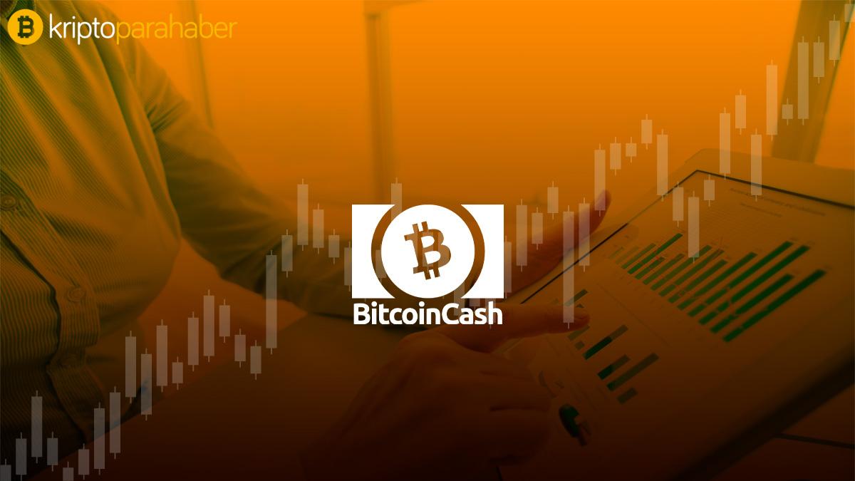 Bitcoin Cash (BCH) Fiyat Analizi: 23 Aralık