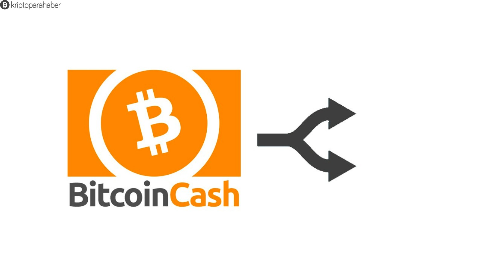 """Dünya Ekonomik Forumu: """"Bitcoin Cash Nakamoto'nun vizyonu ile uyumlu"""""""