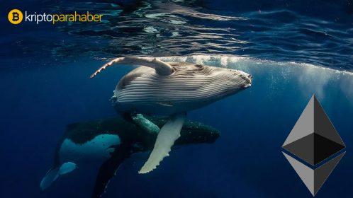Ethereum balinaları kritik sinyaller veriyor! İki haftada yüzde 4 artış...
