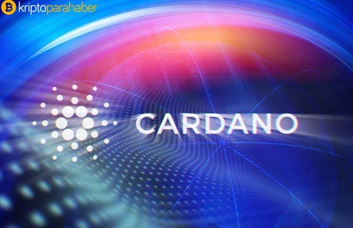 Popüler altcoin Cardano