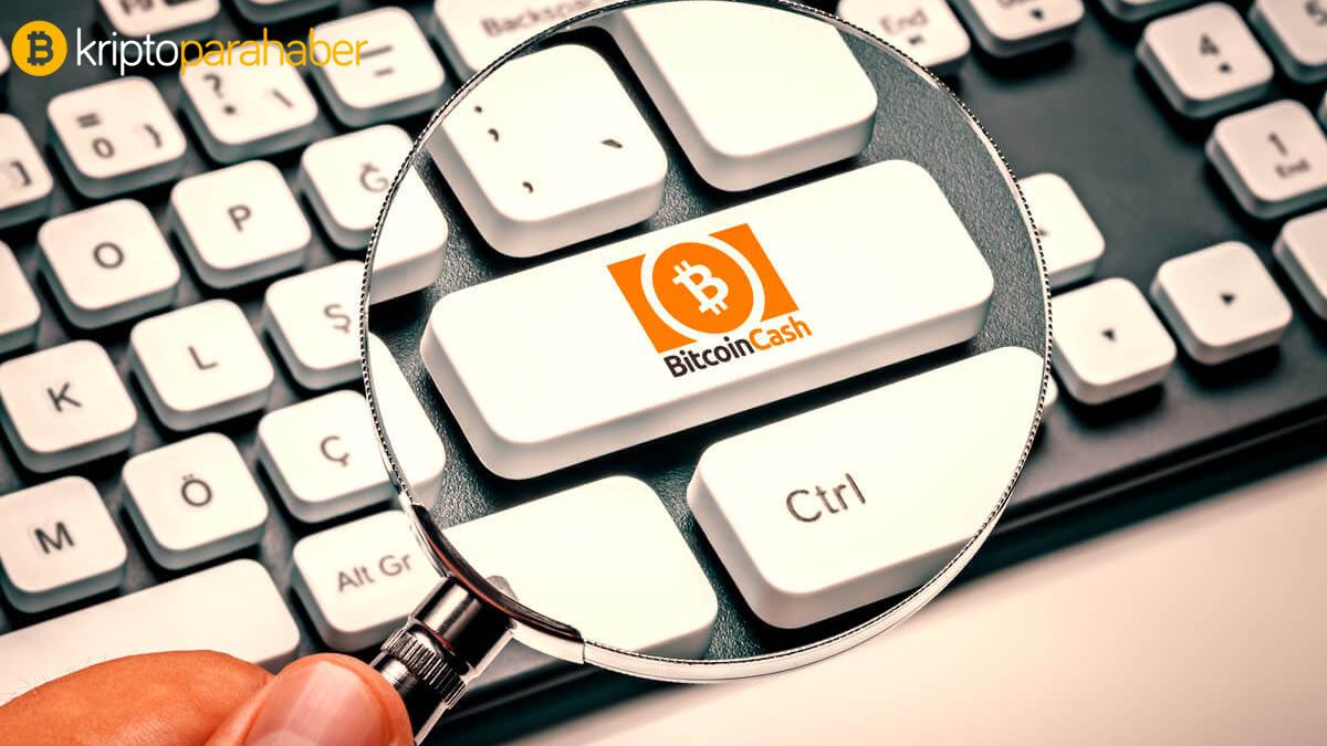 """Herkes Bitcoin'den söz ederken ünlü internet girişimcisi bu altcoin'e işaret etti! """"9 kat artacak"""""""