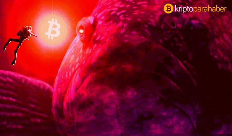 Sıcak Gelişme: Kripto tarihindeki en büyük Bitcoin transferinden biri gerçekleşti!