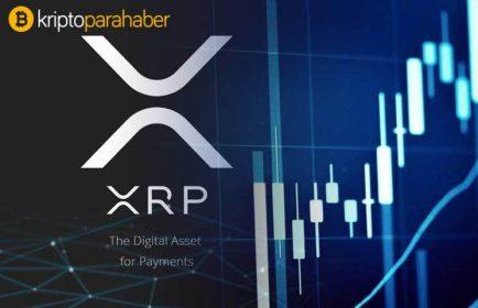 Bir analist dünkü çöküşte Ripple'ı eleştirdi, ünlü XRP yatırımcısı sert yanıt verdi