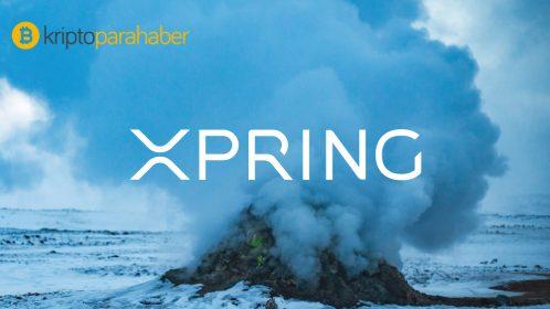 Ripple yatırım kolu Xpring üç yıllık kitlesel benimsenme planını açıkladı
