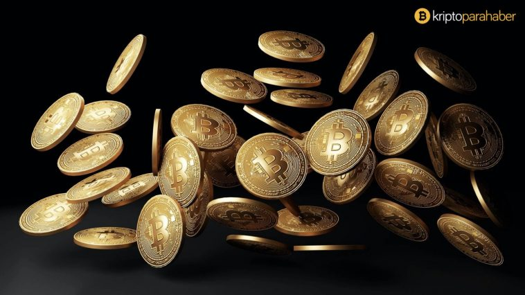 Bitcoin boğası Tim Draper portföyündeki altcoin'leri açıkladı