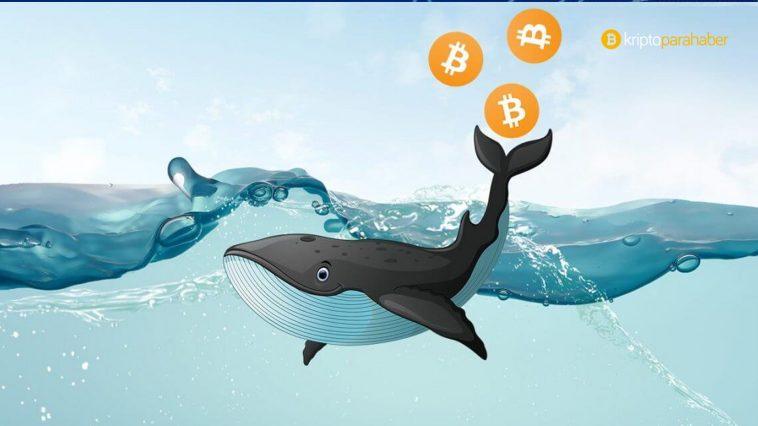 """""""Boğalar kazandı"""" Bitcoin'de trend tersine mi dönüyor?"""
