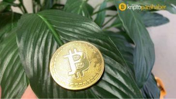 Altcoinler yükselirken Bitcoin boğaları bu seviyede dirençle karşılaşıyor