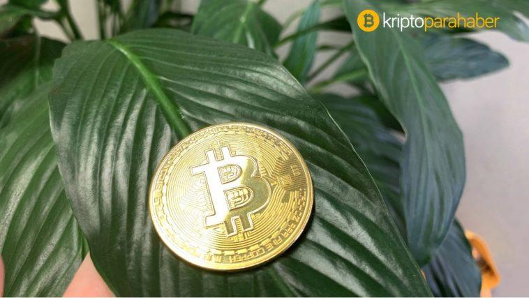 Bu 3 neden Bitcoin'de yeni bir zirveye işaret ediyor – işte ayrıntılar