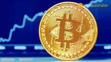 Bitcoin baskınlığı düşerken bu iki kripto para rekor kırdı!