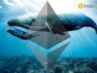 Kripto para borsalarından 1,6 milyar dolarlık Ethereum çekildi! Neler oluyor?