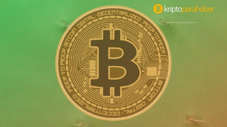 Yüzde 42'lik yükselişin gerçekleştiği Kasım ayında Bitcoin hareketliliği ne anlama geliyor?