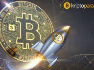Bir sonraki zirvede Bitcoin yatırımcıları ne yapacak? Anketler çarpıcı bilgiler ortaya koydu!