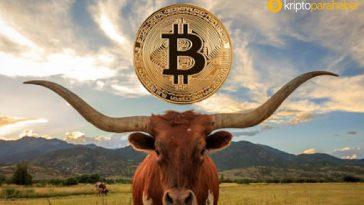 Uzun vadeli Bitcoin sahiplerinin davranışlarında ne gibi değişimler oluyor?