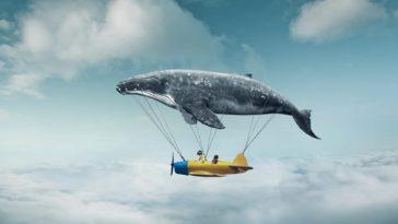 Bitcoin balinaları, hâkimiyeti küçük yatırımcılara bıraktı!