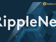 Ripple CEO'su ve RippleNet Genel Müdürü'nden önemli açıklamalar geldi!