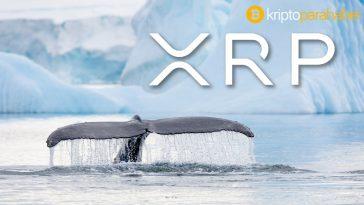 Ripple devasa boyutta XRP'yi hareket ettirdi – neler oluyor?