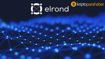 Elrond (EGLD) CEO'su basitleştirilmiş deneyimle bir milyar yeni kripto kullanıcısını hedefliyor