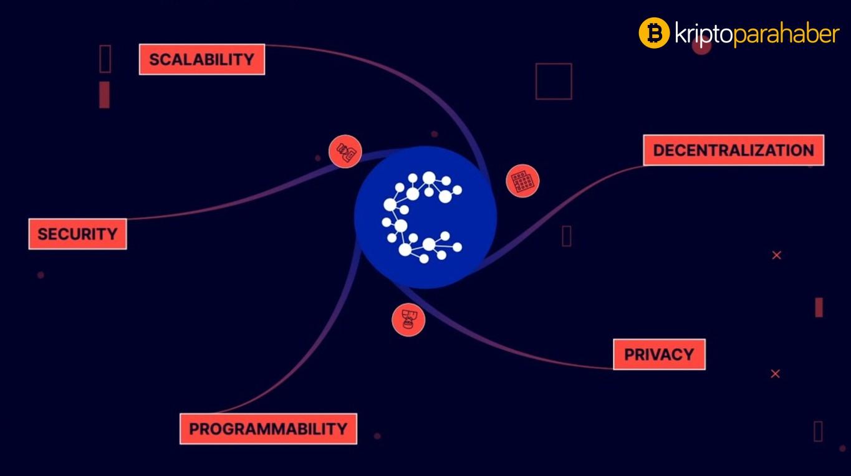 CasperLabs, Terra Virtua koleksiyon platformuyla iş ortaklığı yapıyor