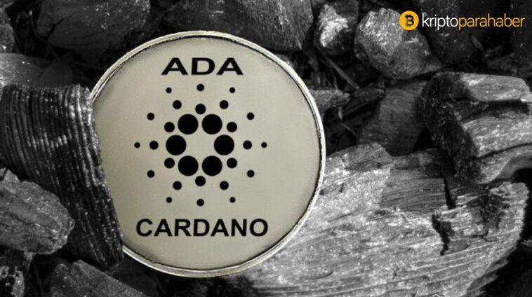 Cardano ve BitTorrent Token fiyat analizi: ADA ve BTT için beklenen yön