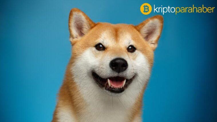 Dogecoin fiyat analizi: DOGE yukarı yönlü ivme kazandı!