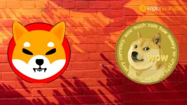 Shiba bu özellikleriyle Dogecoin'i gölgede bırakabilecek mi?